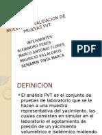 Muestreo y Validacion de Pruevas Pvt