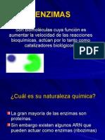 Enzimas (3).ppt