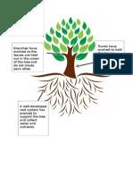 tree adaptations