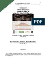 Ricardo Riso - Por Dentro Da Literatura Negro-Brasileira UNIAFRO 2015 Un VIII-libre