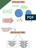 Sistem Ventilasi Paru-paru