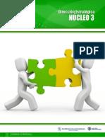 Nucleo_3_direccion_estrategica[1]