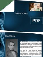 Tumor Wilm Kul 8