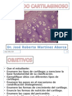 16-tejido-cartilaginoso