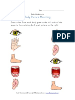 Body Worksheet Picture Matching
