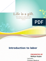 Introduction of Labour