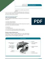 Aparato Gastrointestinal