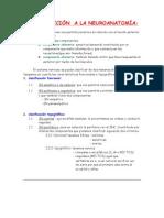 2-INTRODUCCIÓN  A LA NEUROANATOMÍA (terminado)