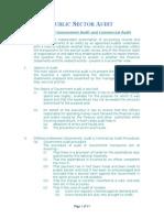 5.Public Sector Audit