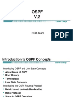 OSPF in Detail