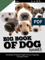 Big Book of Dog Names
