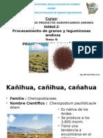 07prockaihua-130223164344-phpapp01 (1)