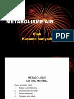 IT 7 - Metabolisme Air - KSH