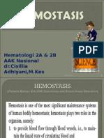 Pengantar Hemostasis 2014