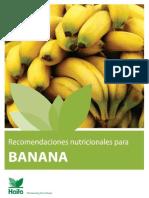 Manejo de nutrición de plantas de bananas
