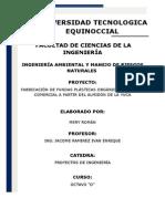 Mery Román (Proyecto)
