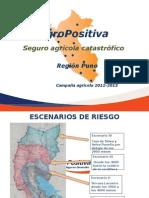 Seguro Agrario 2012-2013 Gilda