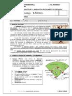 Ficha Beisbol 3ºESO