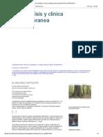 Psicoanalisis y Clinica Contemporanea_ EL DISCURSO CAPITALISTA