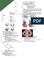 2 Cardiomyopathy