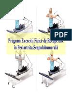 229510430-120756183-PSH.pdf