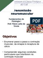 05 - EF - Transmissão Neuromuscular