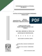 Protocolo Corregido1 Hilda