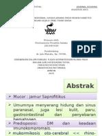 Jurnal Mukormikosis