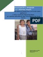 1 03 ODECS Idioma Maya L1 2013