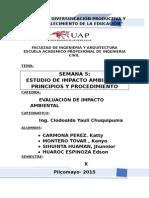 Estudio de Impacto Ambiental, Principios y Procedimiento