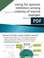 Screening for quorum sensing inhibitors...marine sponges (Pres 1)