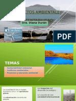 Proyectos Ambientales y Sustentabilidad1