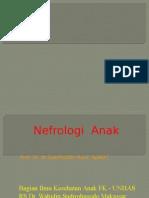 anak urogenital.pptx