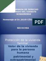 Proteccin-de-la-vivienda-familiar (2).ppt