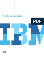 IBM - Big Data Platform