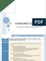Informe Estudio Consumo Cultural 2010