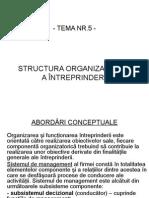 Structura Organizatorică