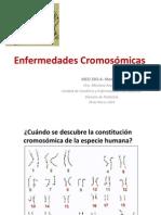 Enfermedades Cromosómicas SIN FOTOS 2014