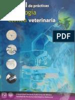 Manual de Practicas Patología Clínica