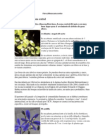Flora chilena zona centro.pdf