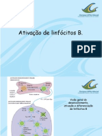 linfocitos+B.pdf