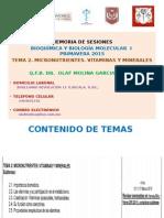 Vitaminas y Minerales.