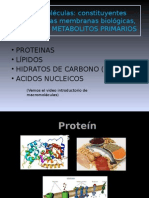 PPT macromoléculas