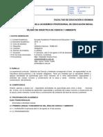 silabus-ciencia-y-ambiente.pdf
