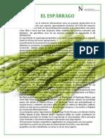 PROCESO LOGÍSTICO DEL ESPÁRRAGO imprimir.pdf