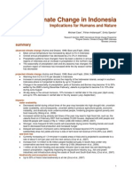 Inodesian Climate Change Impacts Report 14nov07