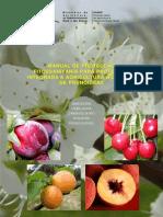 Manual de Prot Fitos p Prot Integr e Agric Biolog de Prunoideas