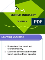 Chapt 6 Tourism Industry