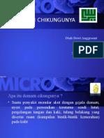Chikungunya PPT