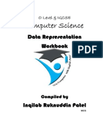 1.1 Data Representation Workbook by Inqilab Patel
